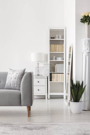 Photo for Plant next to grey sofa in white apartment interior with lamp on cabinet next to bookshelf. Real photo - Royalty Free Image