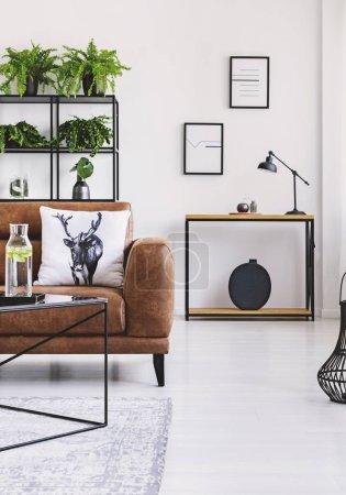 Photo pour Jungle urbaine dans l'intérieur de la maison moderne. Pots avec plante sur une étagère derrière un canapé en cuir confortable . - image libre de droit