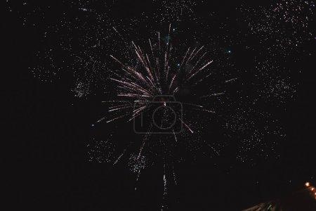Photo pour Feu d'artifice coloré sur le fond de ciel noir - image libre de droit