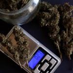 Drug dealer packs marijuana, soft drug packaging  ...
