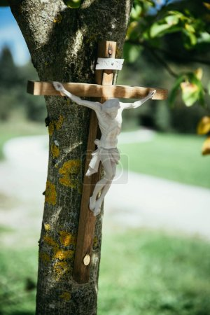 Photo for Crucifix on a tree, outdoors, jesus christ - Royalty Free Image