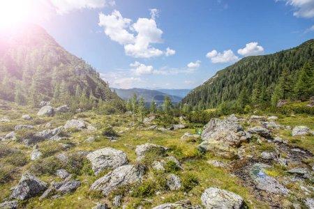 Photo pour Paysage montagneux idyllique dans les Alpes : Beaux paysages de rochers, prés, arbres, montagnes et ciel bleu - image libre de droit
