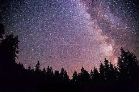 Photo for Milky way clear at night, silhouettes of trees - Royalty Free Image