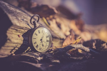 Photo for Vintage watch leans on a wood piece and dry leaves, blurriness - Royalty Free Image