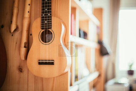 Photo for Ukulele and flutes hanging on a wooden bookshelf, close up picture - Royalty Free Image