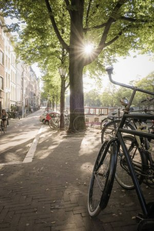 view on Amsterdam street with  bicycle