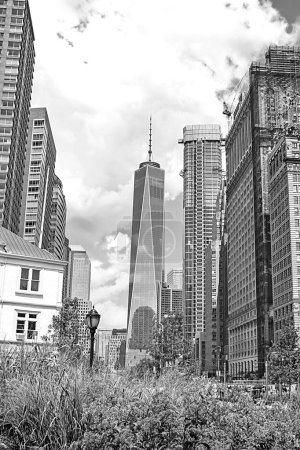 Photo for Skyscrapers in Manhattan., New York City. - Royalty Free Image