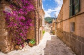 Valldemossa beautiful streets decorated in plant pots and colorful flowers