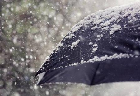Photo pour Flocons de neige tombant sur un concept de parapluie noir pour mauvais temps, hiver ou blizzard neigeux - image libre de droit