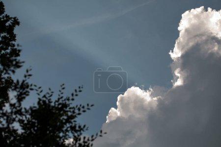 Photo pour Ciel bleu avec des nuages, les rayons du soleil et vert branche d'arbre. - image libre de droit