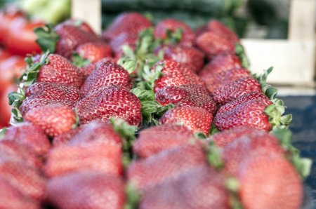 Photo for Closeup view of strawberries in the market - Royalty Free Image