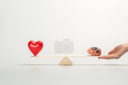 Photo pour Vue recadrée de la femme retenant la balançoire avec le cerveau humain et le coeur rouge sur le blanc - image libre de droit
