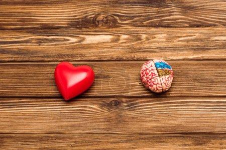 Photo pour Vue supérieure du cerveau humain et du coeur rouge sur la surface en bois - image libre de droit