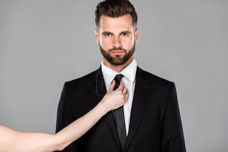 Photo for Woman tying tie on businessman in black suit isolated on grey - Royalty Free Image