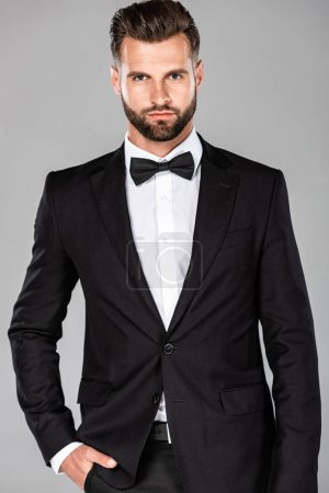 Photo for Elegant man in black suit and bow tie with hand in pocket isolated on grey - Royalty Free Image