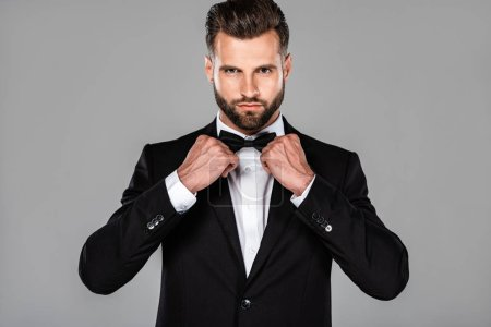 Photo for Elegant man in black suit fixing bow tie isolated on grey - Royalty Free Image