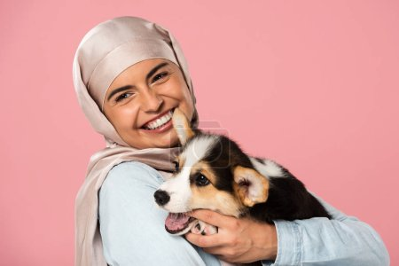 Photo pour Fille arabe de sourire dans le chiot de corgi de fixation de hijab, d'isolement sur le rose - image libre de droit