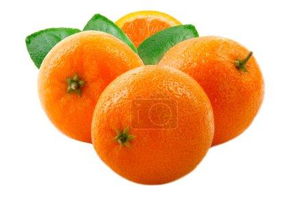 Photo pour Mandarines fraîches isolés sur fond blanc - image libre de droit