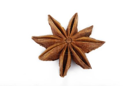 Photo for Closeup of anise, food background - Royalty Free Image