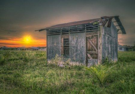 Foto de Beautiful golden hour sunset scene - Imagen libre de derechos