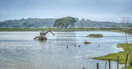 Landscape view of tin ore lake with greenery under...