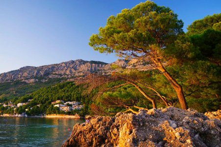 Photo for Beautiful Brela beach at Adriatic Sea in Makarska Riviera, Dalmatia, Croatia - Royalty Free Image