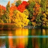 """Постер, картина, фотообои """"Красивый Осенний парк с разноцветными листьями, деревья и озеро. Осень Landscape.Park осенью. Лес в октябре"""""""
