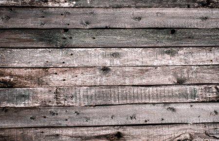 Photo pour La texture de la vieille clôture en bois léger avec des nœuds coupés et des fissures. Fond d'écran pour design vintage - image libre de droit