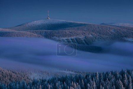Foto de Scenic view of fir trees in snow at winter - Imagen libre de derechos