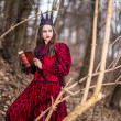 Art Photography. Mysterious Fairy Lady in Red Dres...
