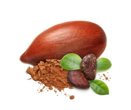 Kakaobohnen und Pulver isoliert