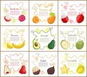 Rambutan and Banana Posters Vector Illustration