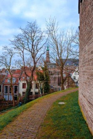 Photo pour Arbres de source sur la rue avec l'architecture européenne traditionnelle à Leiden, Pays-Bas - image libre de droit