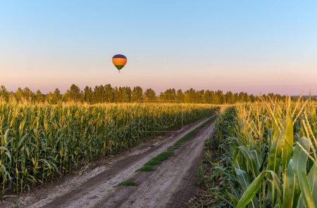Photo pour Ballon à air chaud au-dessus de la route dans le domaine vert dans la campagne de terres agricoles - image libre de droit