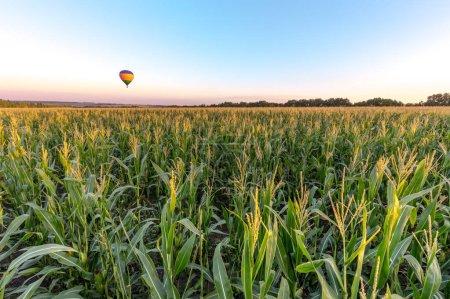 Photo pour Ballon à air chaud au-dessus du champ vert dans la campagne de terre agricole - image libre de droit