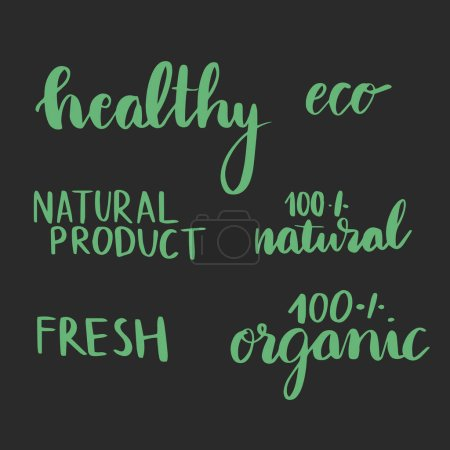 Photo for Vector set of hand made graphic elements. Natural product. Organic product. Eco. Vegan. - Royalty Free Image