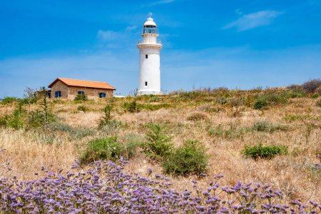 Photo for Republic of Cyprus. Pathos. White lighthouse on the Mediterranean coast. Lighthouse against the nature of Cyprus. Flora Of Cyprus. Lilac flowers on the beach. - Royalty Free Image
