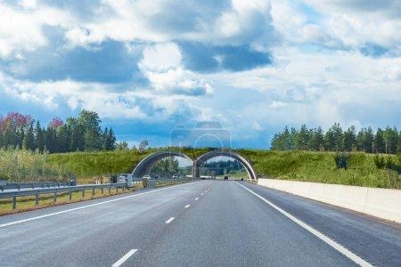 Photo pour Finlande. Helsinki. Architecture routière de la Finlande. Le pont pour les animaux sur la route. Arc de route dans les collines. Concept - Harmonie de la nature et de l'homme. Autoroute près d'Helsinki. Voyages en Finlande - image libre de droit