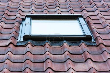 Photo pour Beau jardin de fenêtre à la maison. - image libre de droit