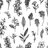 Vector seamless pattern of tropical flowers isolated