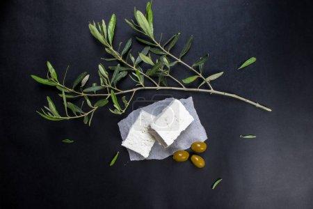 Foto de Feta Greek cheese with olive Tree leaves - Imagen libre de derechos