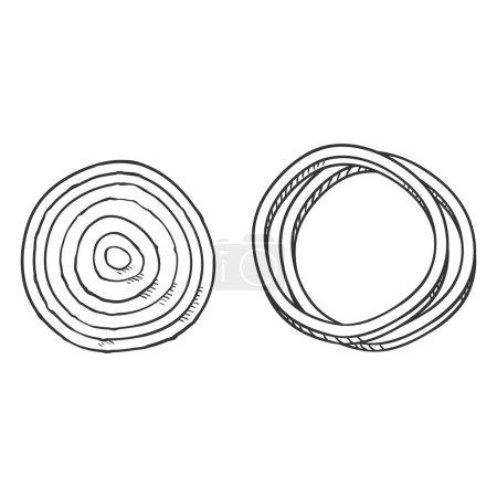 Photo pour Afficher Sketch Onion Round Slices - image libre de droit