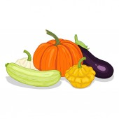 Vector Cartoon Big Pile of Vegetables: Squash Pumpkin and Eggplant