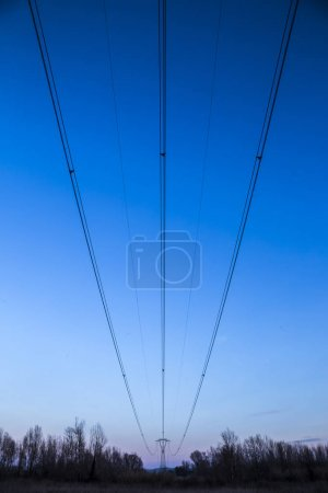 Photo for Sunset view of overhead electric line - Royalty Free Image