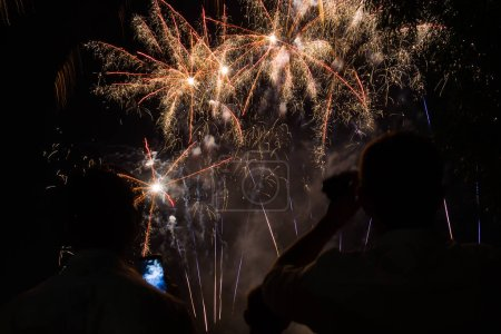Photo for People watching fireworks in the Park - Royalty Free Image
