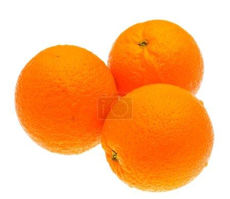 Photo pour Oranges coupées isolées sur fond blanc . - image libre de droit