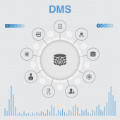 DMS infographic with icons Contains such icons as system management privacy password