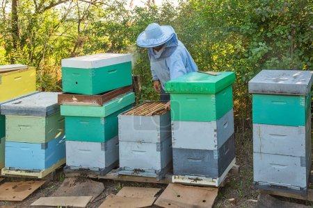Photo pour Apiculteur au travail. L'apiculteur sauve les abeilles. - image libre de droit
