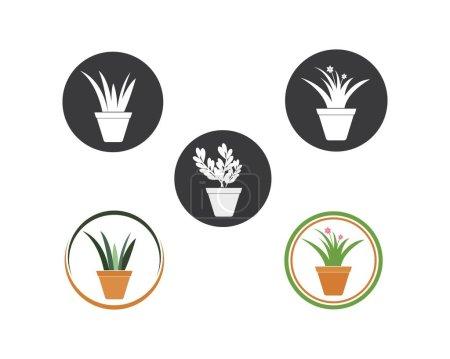 Illustration for Plant in pot illustration vector template design - Royalty Free Image