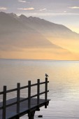 peaceful morning at northern shores of Lake Garda, Italy